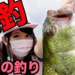 【釣りガール】久しぶりのバス釣りで爆釣するのはやっぱりいつもの釣りだった!相模湖