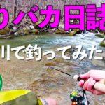 【渓流ルアー】「釣りバカ日誌」のロケ川で釣ってみた。
