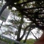琵琶湖でブラックバスを釣ろうとしたら!