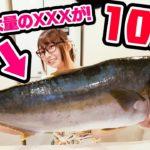 【大事件】初めて10kgの超巨大魚さばいたら中から大量のとんでもないものが出てきた!!【トミックさんコラボ】