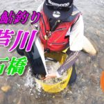 【鮎釣り 2020】NO.12 大芦川 赤石橋