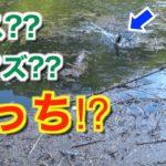 #25 【ヤマセンコー4in】バスかナマズか⁉釣り場はゴミだらけで最悪な状況だが・・・ / リベリオン 631MRB / タトゥーラ SV TW /  6月下旬 / バス釣り / 広島