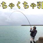 沖縄の魚引きがヤバイ件 【フカセ釣り ウキ釣り okinawafishing カーエー ゴマアイゴ】