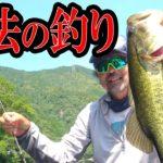 加藤誠司の「魔法の釣り」全て見せます!【最新テク】