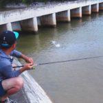 水門から飛び出した謎の魚がルアーに襲い掛かる瞬間!