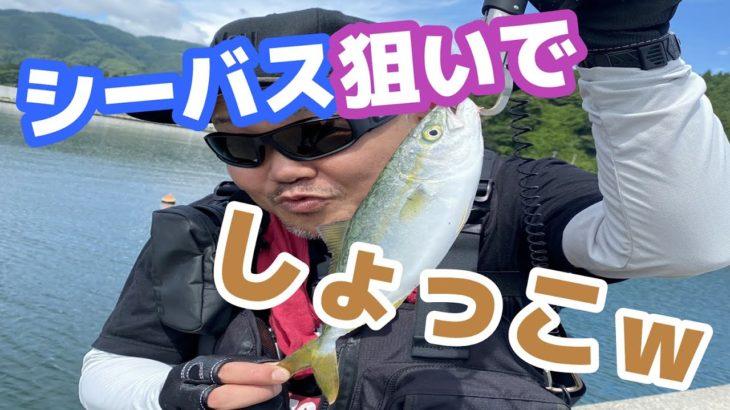 岩手県でシーバス狙ったらとんでもない魚が釣れた!!【岩手三陸釣り紀行】