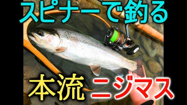 【北海道本流銀ぴかニジマス】水深20㎝目の前でバイト!川釣りルアーフィッシング