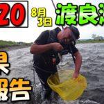 【鮎釣り】2020ベストシーズン到来!渡良瀬川でデカ鮎釣り!!