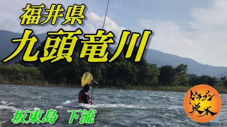 【鮎釣り 2020】NO.20 九頭竜川 坂東島下流