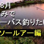 暑い8月 夕涼みで川シーバス釣りたい ダイソールアー編