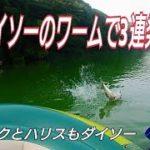Daiso(ダイソー)のワームでバス釣り!夏の野池で3連発!