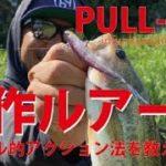 【バス釣り】ism PULL-70F【新作ルアー】の釣れるアクションを大公開!!!