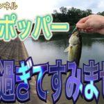 【ブラックバス】ポッパーで釣る夏の風物詩❗️まさかの事故⁉️事件⁉️
