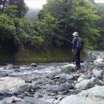 【渓流釣り】梅雨明けの道志川。アタリは少ないが納得の魚が釣れた!