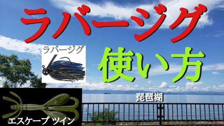【バス釣り】琵琶湖で真夏のラバージグ  使い方