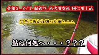 令和2  8/4 鮎釣り  米代川支流  阿仁川上流