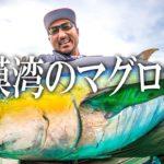 至高の大物釣り。相模湾でキハダマグロと対峙する。