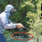 秘密のワザってまだあるんやなー。とある釣り師にこっそり教えてもらった方法。