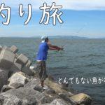 海釣り旅 ③ 信じられない程の魚が喰らいついてきた!!!