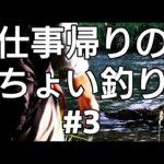 【尻別川】仕事帰りのちょい釣り【リールメンテ】