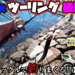 釣り×ツーリング 激安1000円以下のタックルで穴に潜む高級ギンギン◯ンポを釣る!後編【モトブログ】NS-1 NSR250R mc21カラー CB400SF 穴釣り よっちゃんイカ ダイソータックル