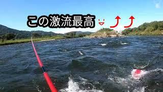 2020年9月21日 福井県九頭竜川 鮎釣り