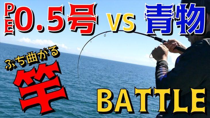 【堤防釣り】PE0.5号VS青物 勝つのはどっち?!