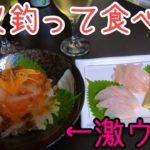 真夏のチヌは美味しいのか…?ダンゴでやっと釣れたチヌを調理してみた結果…【新居海釣り公園】【紀州釣り】