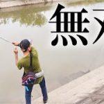 釣れるとわかっていれば、すなわち無双。