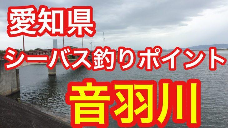 音羽川 愛知県 シーバス釣りポイント