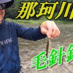 那珂川で毛針釣り