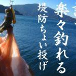 誰でも楽々釣れる「堤防ちょい投げ」で高級魚アコウ(キジハタ)を釣るための具体的方法とは?