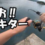 【泳がせ&ショアジギ】久しぶりにあのお魚との闘いに緊張した。