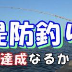 堤防釣り【茨城県日立市】イソメで五目達成なるか!?