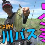 【バス釣り】川へリベンジに行ってきました