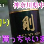 【2020.10.1初心者の鮎釣り日誌神奈川県中津川】#17