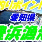 【愛知県釣りポイント】南知多町、豊浜漁港海釣り公園2020年10月、
