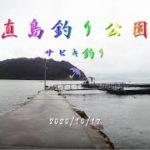 直島つり公園 サビキ釣り 20201017