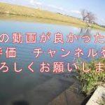 #22【バス釣り】秋の巻きもの縛り!