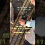 カワハギ 引っ掛け釣り 平磯海釣り公園 9/27 7:30頃