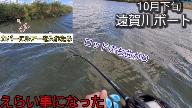 〈Vlog〉遠賀川ボート釣り、カバーにルアー入れたらエライ事になった、、【福岡バス釣り】【遠賀川】【ボート釣り】【10月】【ism】【マックスセント】