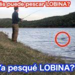 Ya un Japonés pescó LOBINA?? メキシコでブラックバス釣れた? #0009