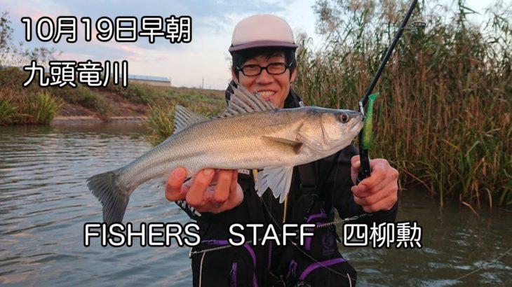 九頭竜川で、シーバス釣ってきました!