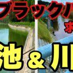 【バス釣り】デカバス釣りたい‼茨城県ブラックバス‼