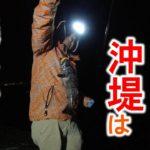 クロソイ連発!久々の函館沖堤防!やっぱり釣れる釣りはなまら楽しい!【釣りん子だべさ】