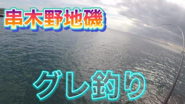 【鹿児島串木野地磯】グレが釣りたくて通いつめたらようやく釣れました‼️#162