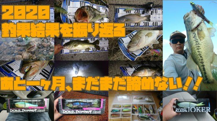 【バス釣り/瀬田川】2020年にバスが釣れたルアーとバスの大きさを振り返ります。ルアーやワームやビッグベイトでの釣果もあります。