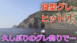 【磯フカセ釣り 久しぶりのグレ釣りで良型二桁釣り!】2020年2月2日 中泊 池の下