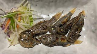 小さいけれど、旨味がとんでもない深海魚【深海チャレンジ】【27.28/200種類目】