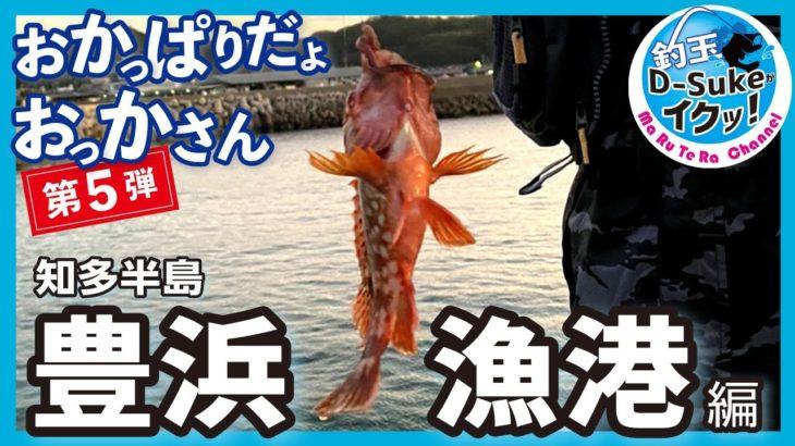 【豊浜漁港】知多半島南端で釣りしてきたよ!おかっぱりだよおっかさん 第5弾 海釣り公園 桟橋